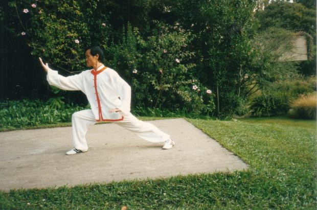 Mestre Xuan Wu, Jardins da Gulbenkian