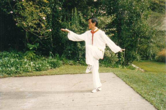 Mestre Xua Wu